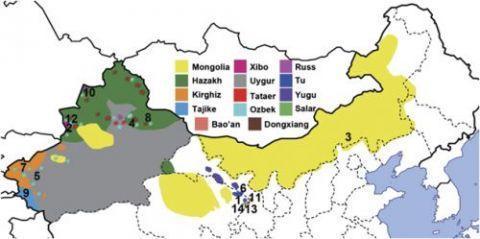 Doğu Türkistan'da ve Çinin Kuzeyinde Çeşitli Etnik Grupların Genetik Değerlendirmesi çalışması safsatalarla dolu
